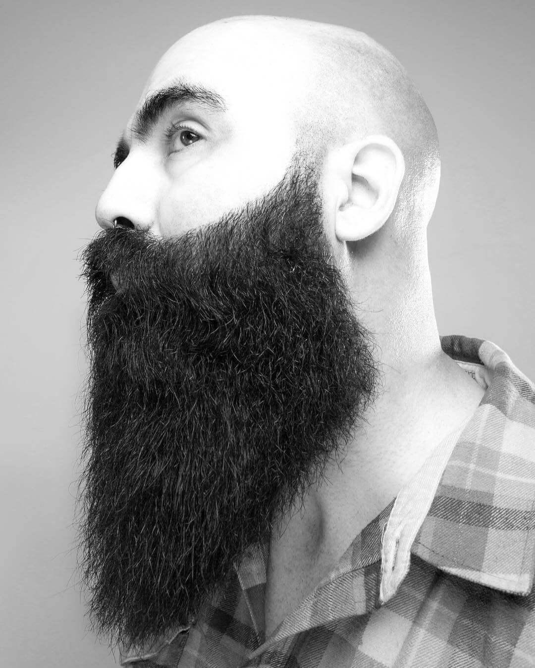 Top 5 barbes avec cheveux rasés